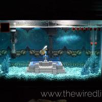 Aquarium Zelda