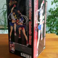 boite figurine kotobukiya FR Street Fighter Sakura Bishoujo